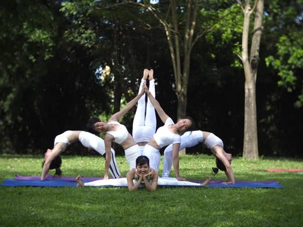 全国瑜伽节将在清化省举行 hinh anh 1