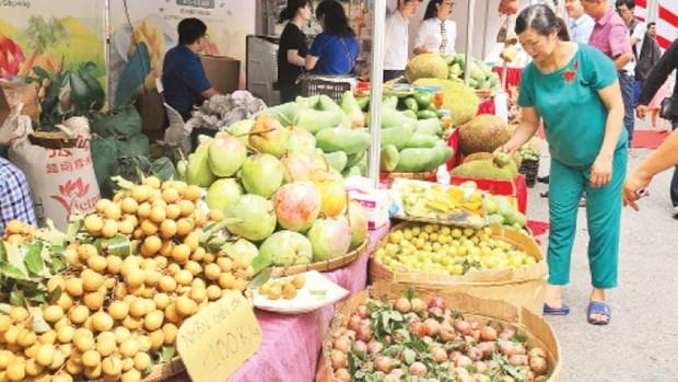 河内市协助各地方销售安全水果、农产品 hinh anh 1