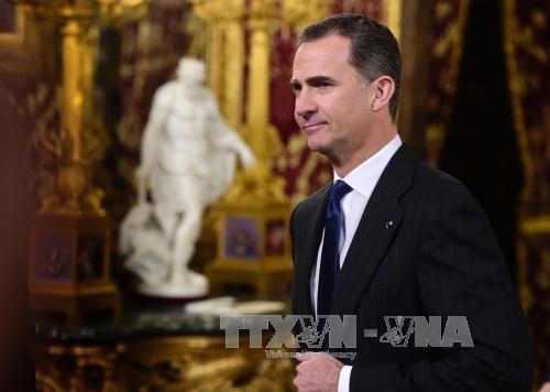西班牙国王费利佩六世高度评价越南经济社会发展成就 hinh anh 1
