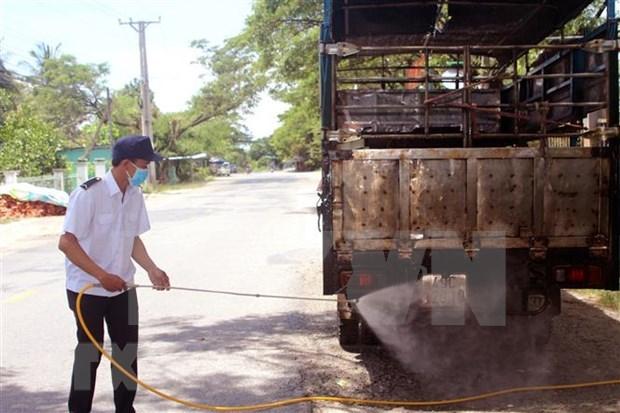 越南有8家企业满足进口泰国生猪的资质条件 hinh anh 1