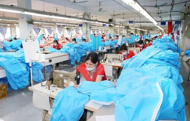 越南医疗防护用品进军欧洲市场的机遇 hinh anh 1