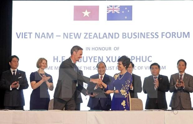 促进越南新西兰贸易关系 hinh anh 1