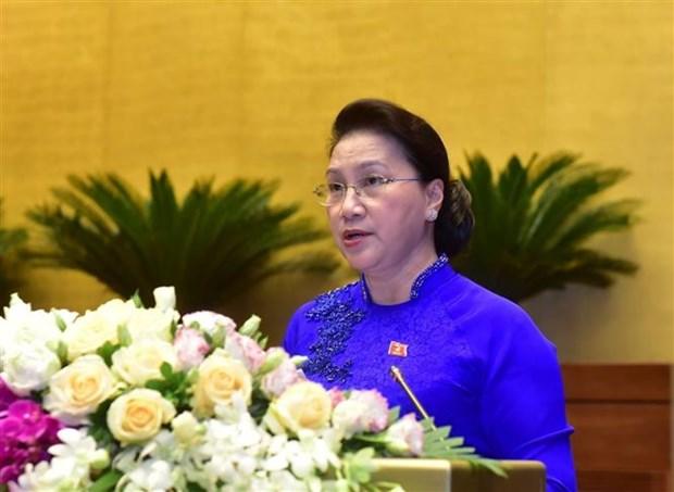 越南第十四届国会第九次会议圆满闭幕 通过了10项法律和21项决议 hinh anh 1