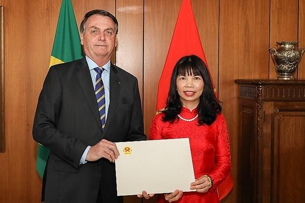 巴西总统:越南的管理方式值得巴西学习借鉴 hinh anh 1