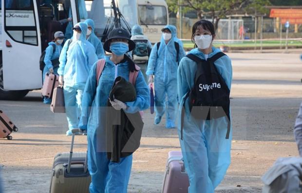 20日越南无新增新冠肺炎确诊病例 hinh anh 1