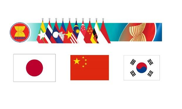 东盟与中日韩增强清迈倡议多边化协议效果 hinh anh 1