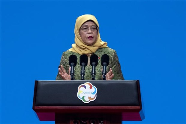 新加坡大选将于7月10日举行 hinh anh 1