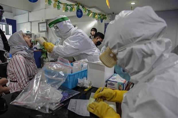 新冠肺炎疫情: 泰国全面恢复商业活动 印尼日内新增确诊病例达1000多例 hinh anh 2