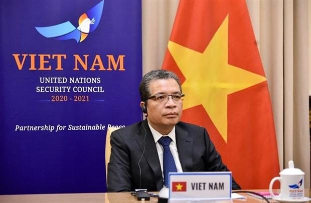 越南一贯支持巴勒斯坦人民的正义斗争和无可侵犯的正当权益 hinh anh 1