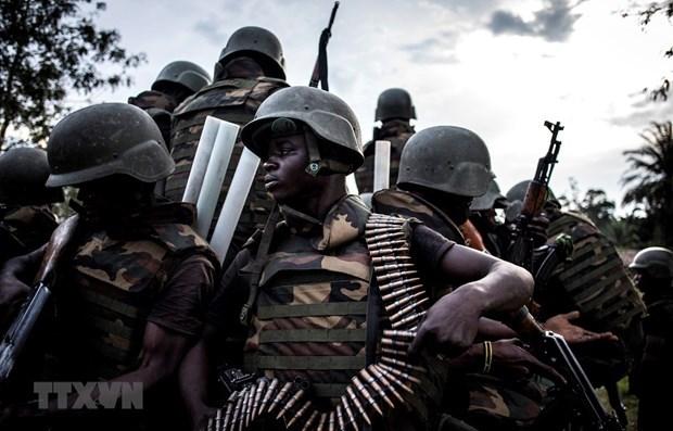 越南与联合国:安理会寻求应对刚果民族共和国东部安全挑战的解决方案 hinh anh 1