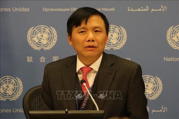 越南呼吁推动阿富汗和平进程 hinh anh 1