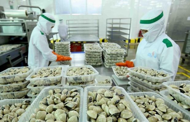 越南企业出口到中国时需要满遵守该市场的规定 hinh anh 1