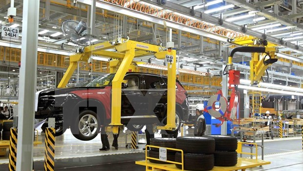 越南税务局减少50%国内车辆购置税 hinh anh 1