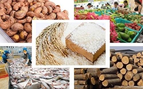2020年上半年越南农林渔业出口额达188亿美元 hinh anh 1