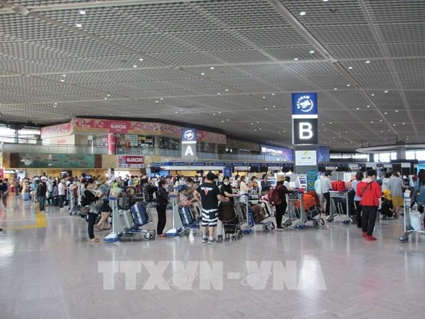 将在日本越南公民接回国 hinh anh 1