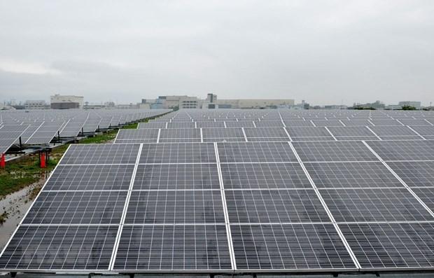 东盟各国浮动式太阳能发展潜力巨大 hinh anh 1