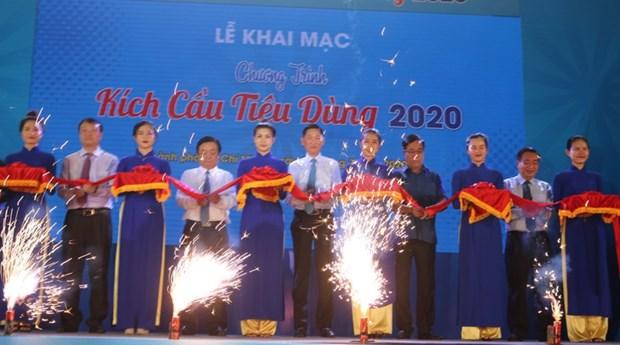 胡志明市举行2020年国内促销活动 hinh anh 1