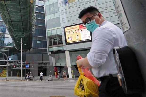 印度尼西亚建议新加坡开放口岸恢复旅游活动 hinh anh 1