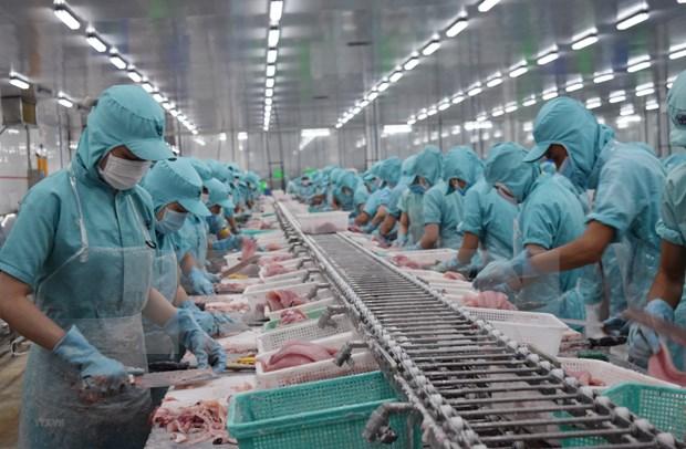 越南与美国建交25周年:贸易合作实现突破性增长 hinh anh 1