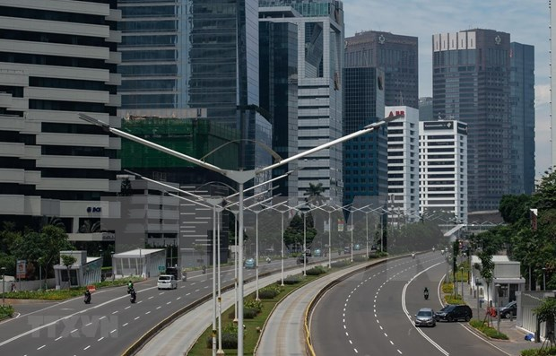 2020年印度尼西亚经济或将萎缩1.4% hinh anh 1