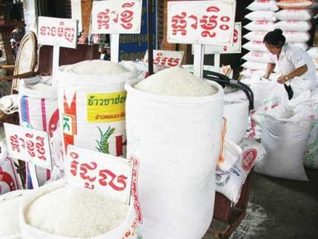 今年上半年中国是柬埔寨大米最大出口市场 hinh anh 1