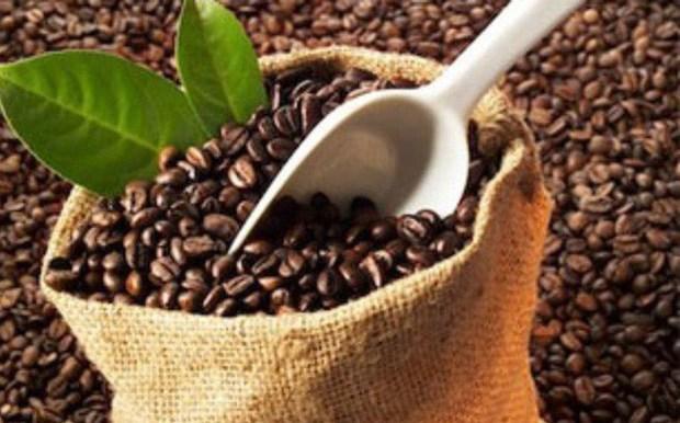 越南咖啡应注重开拓北非市场 hinh anh 1