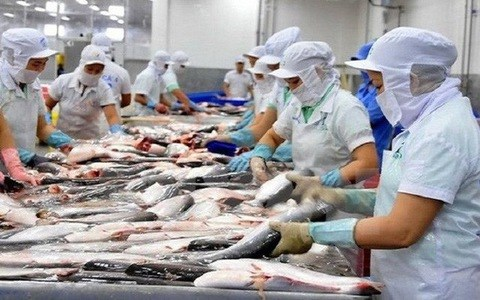 东盟是越南的潜在出口市场 hinh anh 1