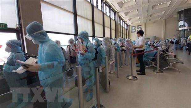 新冠肺炎疫情:将滞留在中国台湾的逾240名越南公民接回国 hinh anh 1