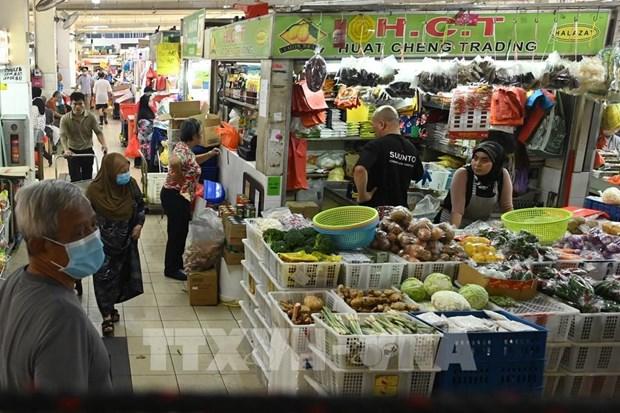 2020年5月新加坡零售销售总额降幅创新低 hinh anh 1