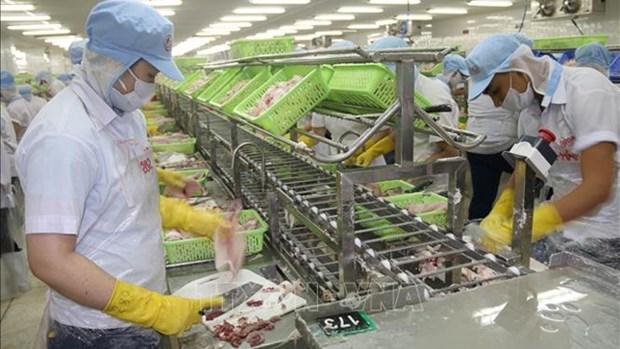 越南前江省保持出口增长势头 hinh anh 1