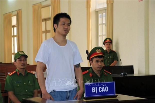 林同省:阮国德旺以煽动宣传反国家罪被判有期徒刑8年 hinh anh 1