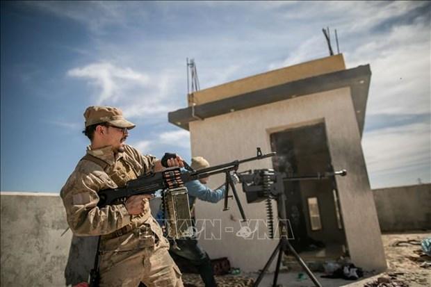 越南与联合国安理会:越南呼吁兑现利比亚问题柏林会议各项承诺 hinh anh 2
