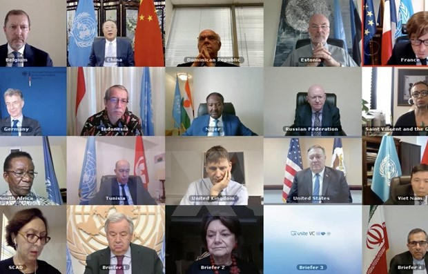 越南与联合国安理会:越南呼吁兑现利比亚问题柏林会议各项承诺 hinh anh 1