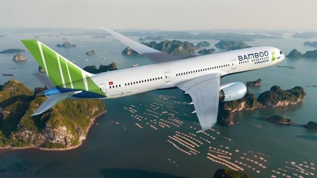 越南航空局公布2020年前6月越南各家航空公司准点率情况 hinh anh 1
