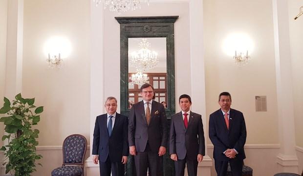 东盟与乌克兰加强多个领域的合作 hinh anh 2