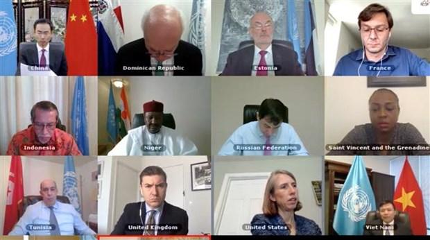 联合国安理会就西非和萨赫勒地区问题进行视频讨论 越南支持预防性外交 hinh anh 1