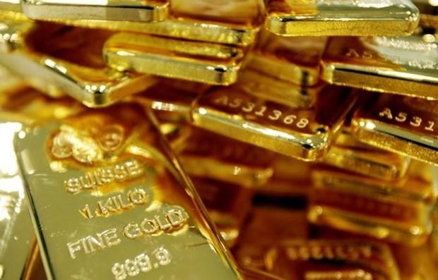 7月13日越南国内黄金价格上涨5万越盾 hinh anh 1