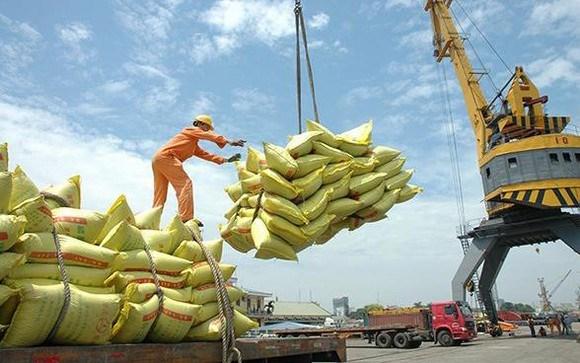 越南农产品价格一周回顾:稻谷和大米价格小幅上涨 hinh anh 2