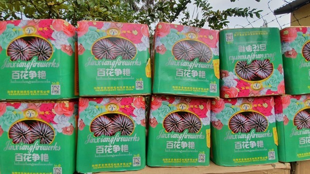 广治省边防查处一起非法运输65公斤烟花案件 hinh anh 1