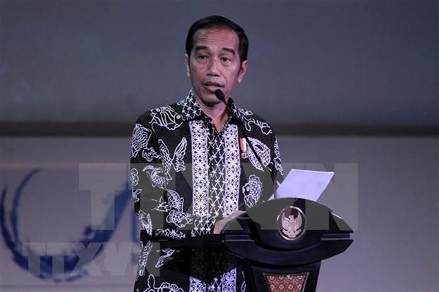 印尼总统佐科·维多多将解散18个国家机构和组织 hinh anh 1