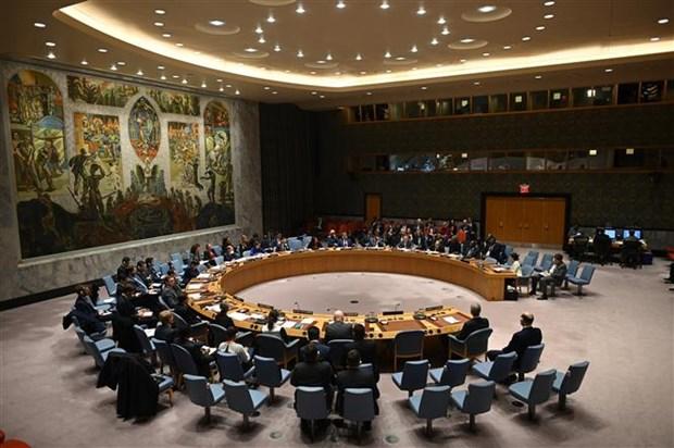 联合国安理会在遭受新冠肺炎疫情影响4个月之后首次召开现场会议 hinh anh 1