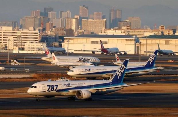 日本全日航空公司将于2020年8月重启东京-胡志明市航线 hinh anh 1