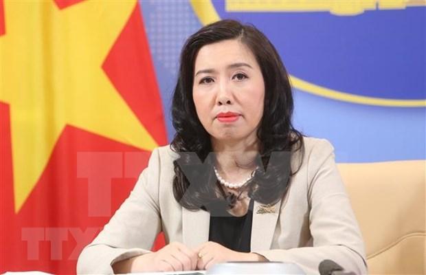 外交部发言人:越南欢迎各国在东海问题上符合国际法的立场 hinh anh 1