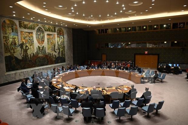 联合国安理会通过有关促进青年在维持和平与安全中的角色的决议 hinh anh 1
