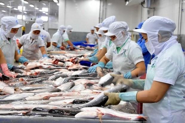 2020年越南力争实现水产品出口额达100亿美元的目标 hinh anh 1