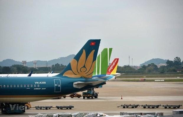 越南同各国职能机关就恢复航空运输活动进行积极磋商 hinh anh 1