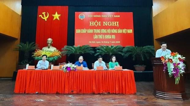 加强对农民合法权益的保护 hinh anh 1
