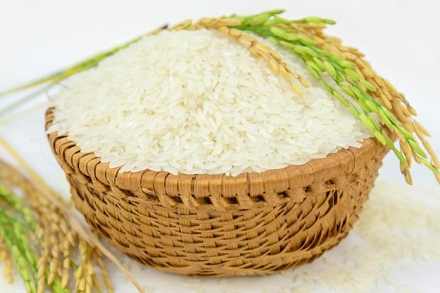 欧盟宣布对越南农产品和大米施行进口配额制度 hinh anh 1