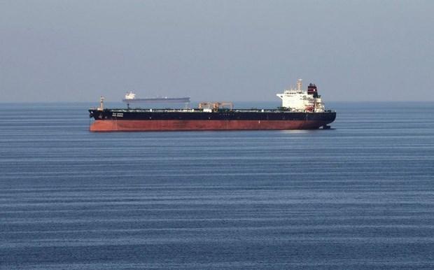 越南呼吁也门胡塞武装组织与联合国合作解决油轮问题 hinh anh 1
