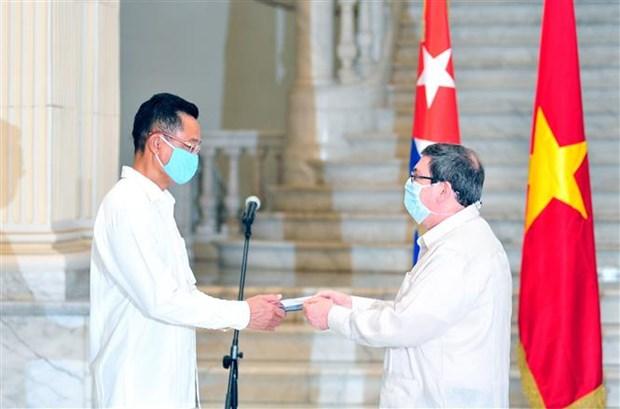 古越两国的合作关系在各个领域取得长足进展 hinh anh 1